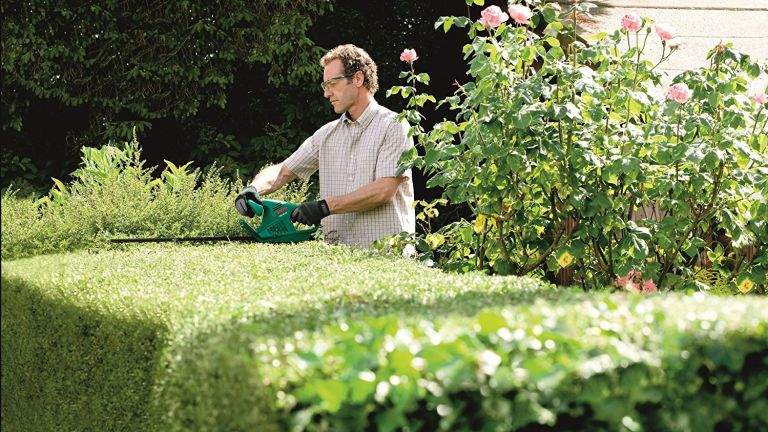Best hedge trimmer: Bosch AHS Electric Hedge Cutter lifestyle image
