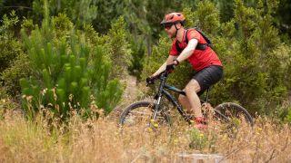 Best mountain bikes under £300