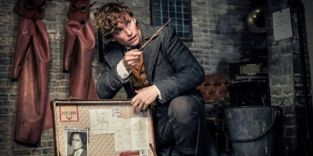 Eddie Redmayne as Newt Scamander from Fantastic Beasts and Where To Find Them