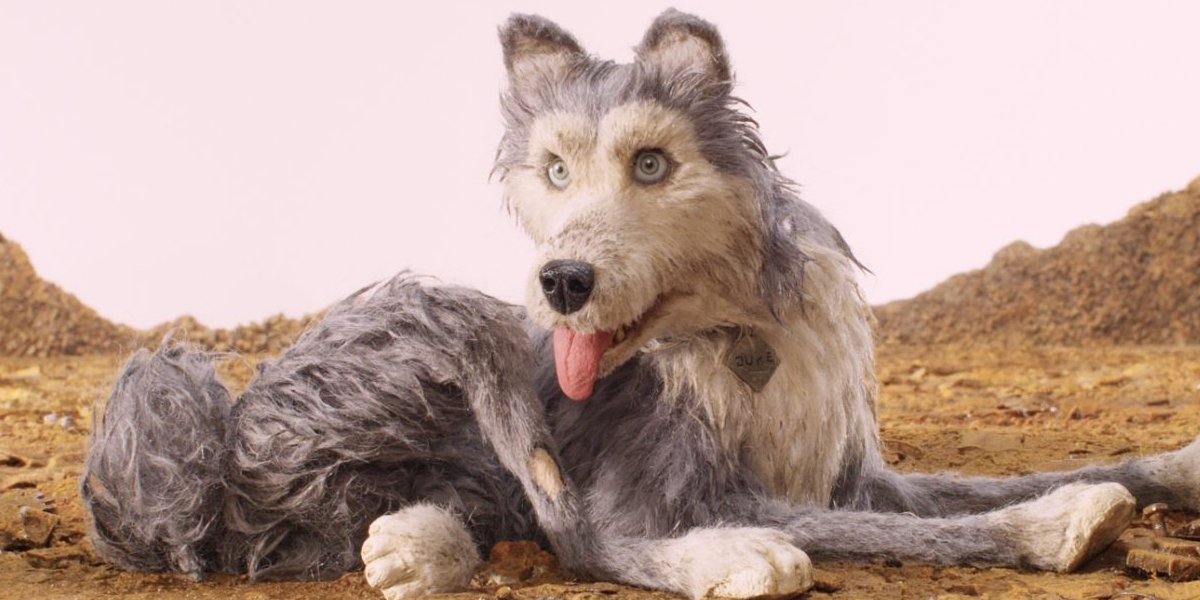 Jeff Goldblum as Duke in Isle of Dogs