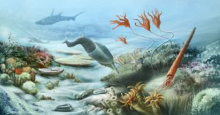 Underwater life thrived during the Silurian Period