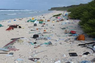 henderson-island-plastic-pollution.jpg