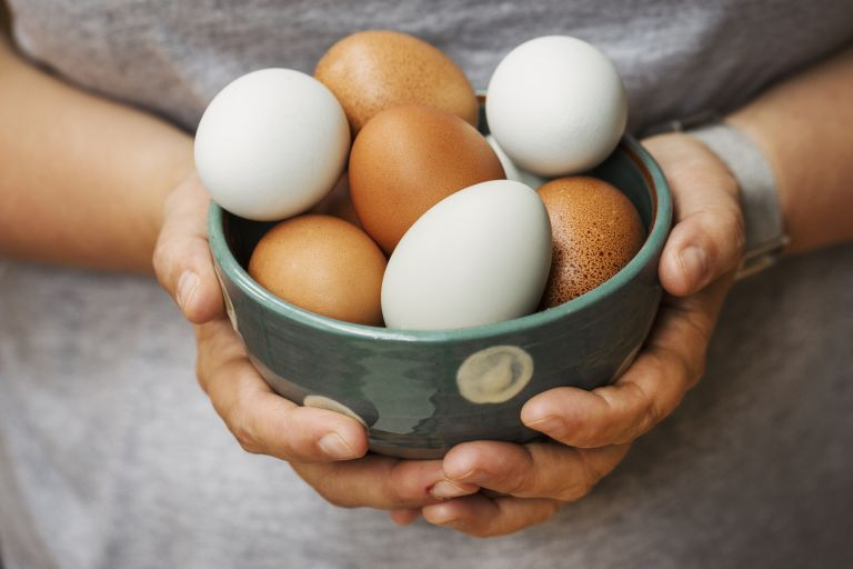 Egg recipes: how to cook eggs