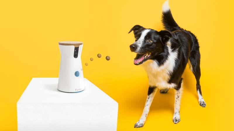 Furbo Dog Camera and Treat Dispenser