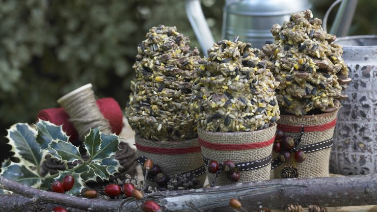 How to make bird feeders: pine cone feeders