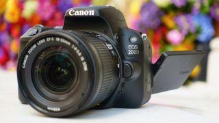 The best cheap Canon camera deals | Digital Camera World