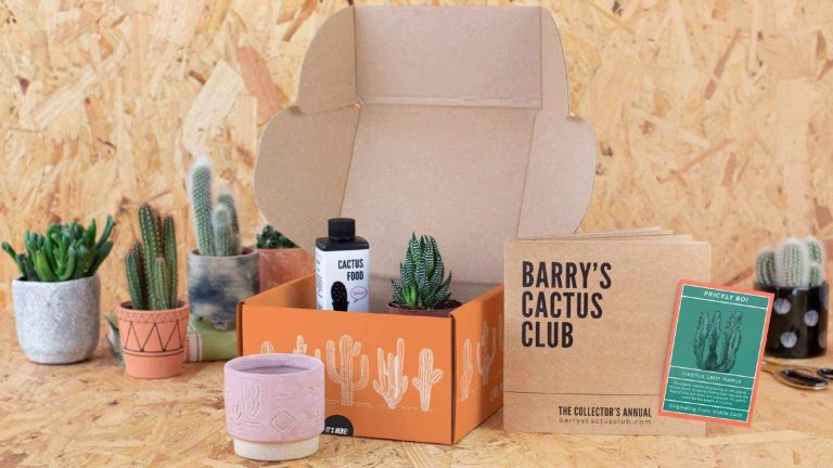 Barry's Cactus Club full set of Hard-to-kill subscription plants