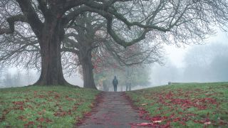 How to capture photographs of a misty scene