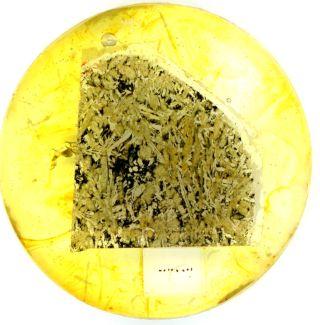 Slice of Martian Meteorite NWA 5298