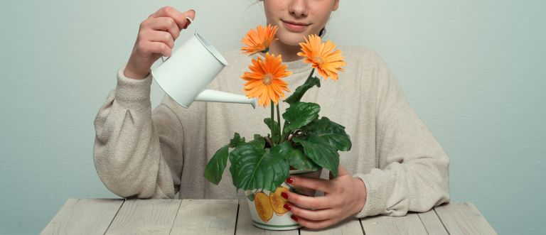 best time to water plants - portrait of Young woman watering house plants with a watering can