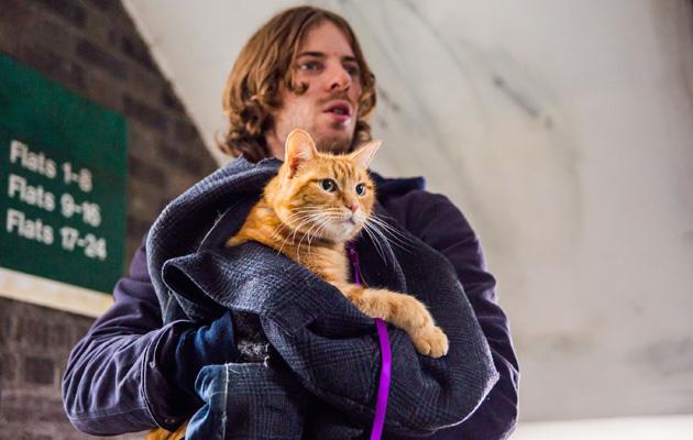 A Street Cat Named Bob Luke Treadaway