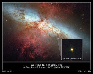 Supernova SN 2014J