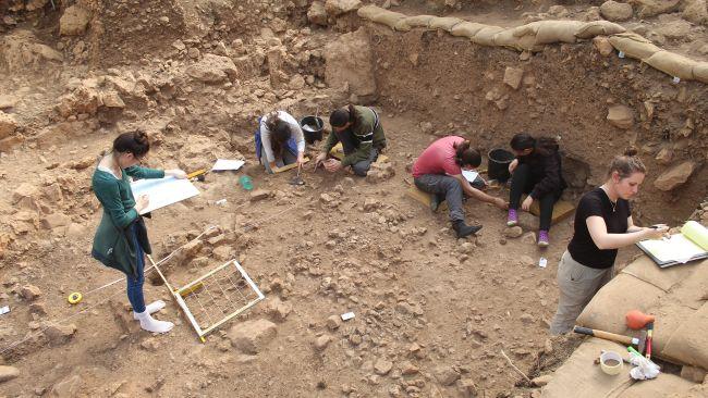 Primeira evidência de que humanos antigos comeram cobras e lagartos é descoberta em Israel
