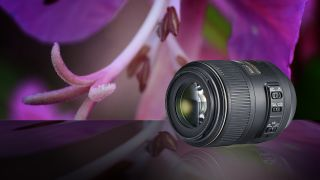 best macro lenses in 2020