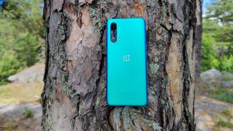 OnePlus Nord CE 5G på en gren i ett träd.