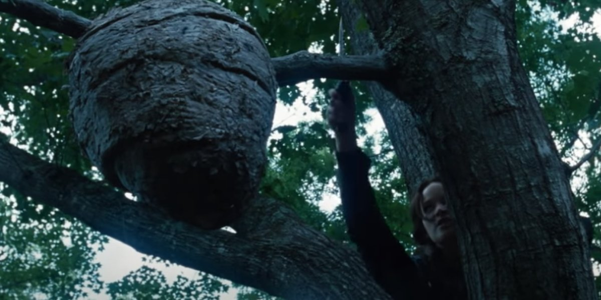 Katniss encounters a tracker jacker nest in The Hunger Games