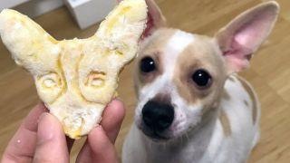 pet portrait cookies
