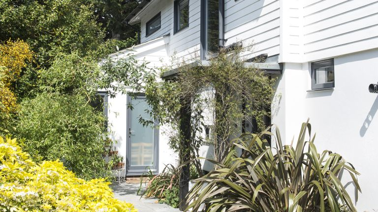 front garden ideas using large architectural plants