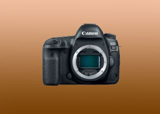 Could we see the Canon EOS 5D Mark V in 2020?