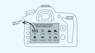 Illustration shows the back of a camera with Auto White Balance selected