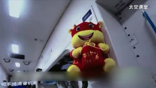 A stuffed cow is currently inhabiting China space station.