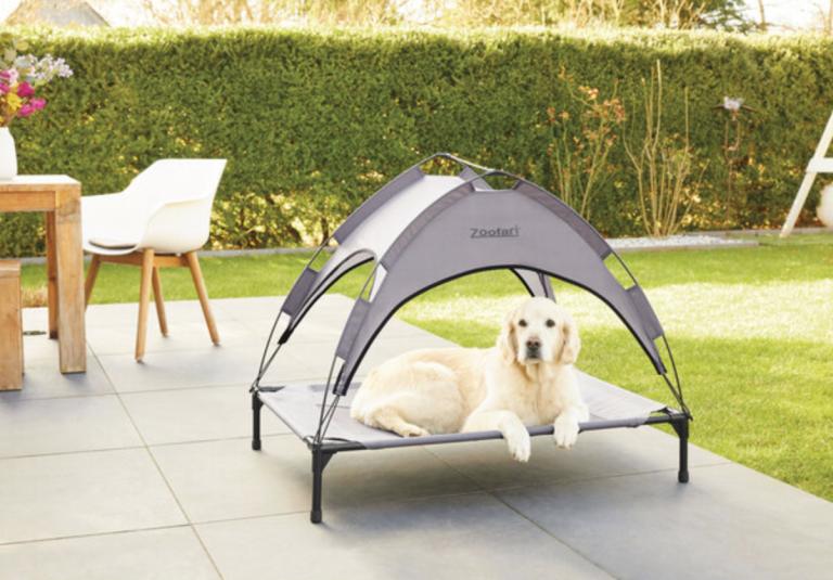 Dog sun bed