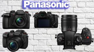 Panasonic Lumix GH5M2 and GH6