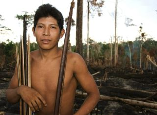 Awa tribesman standing in burnt-out forest.