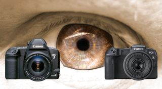 The eyes have it: photographers WANT Canon's Eye Controlled Focus back!