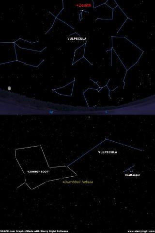 Foxy Star Pattern Points to Other Stellar Sights