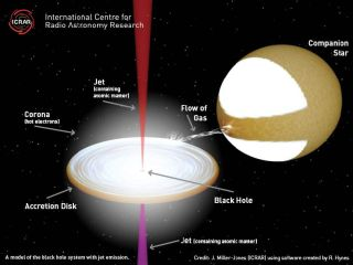 Guts of Superfast Black Hole Jets Revealed
