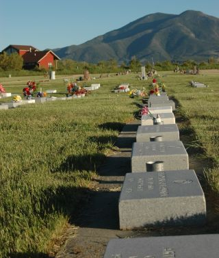 Traditional cemeteries are becoming less popular.