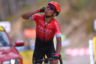 VALDEBLORE LA COLMIANE FRANCE MARCH 14 Arrival Nairo Quintana of Colombia and Team Arkea Samsic Celebration during the 78th Paris Nice 2020 Stage 7 a 1665km stage from Nice to Valdeblore La Colmiane 1500m Paris Nice 2020 final stage as part of the fight against the spread of the Coronavirus ParisNice parisnicecourse PN on March 14 2020 in Valdeblore La Colmiane France Photo by Luc ClaessenGetty Images