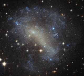 Dwarf Irregular Galaxy IC 4710