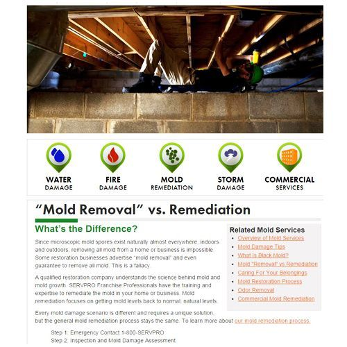 Servpro Review - Pros, Cons and Verdict | Top Ten Reviews