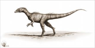 jurassic theropod