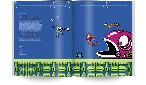 NES book