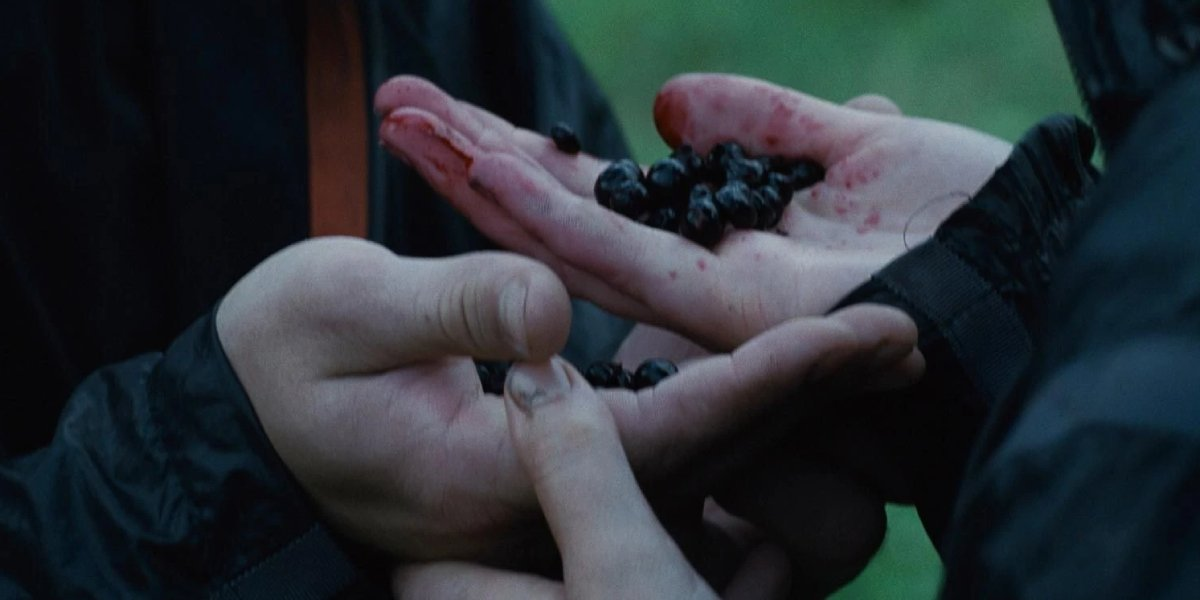 Katniss and Peeta hold Nightlock in their hands in The Hunger Games