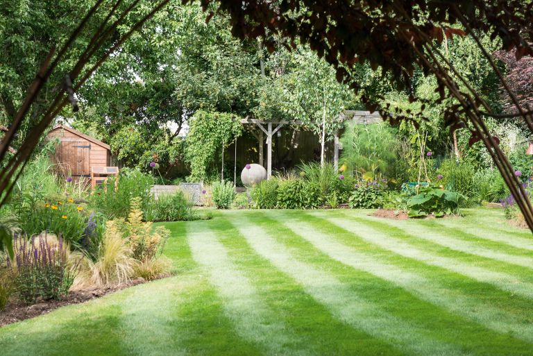 best weed killer: garden with a large lawn and lots of plants
