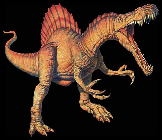 Spinosaurus The Largest Carnivorous Dinosaur Live Science