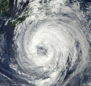 typhoon talas, talas, hurricanes, tropical storms, talas death toll, talas japan, japan storm, japan death toll