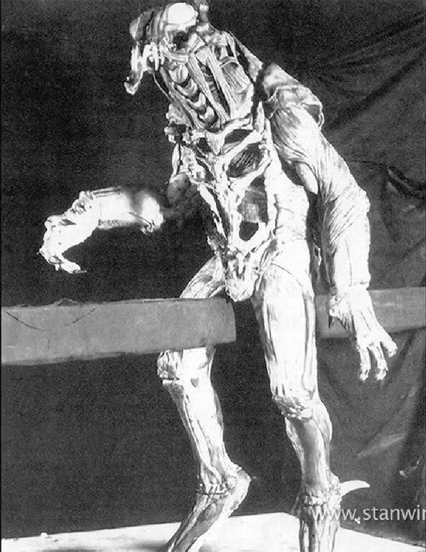 Jean Claude Van Damme Predator