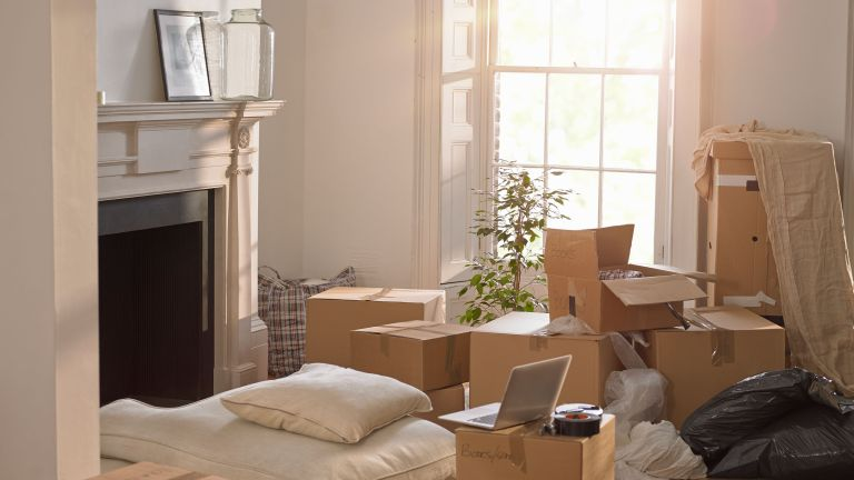 living room filled with moving boxes