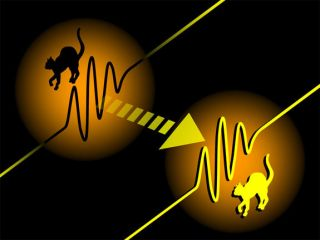 an illustration of the quantum teleportation of 'Schrodinger's Cat' wave packets of light from a past physics study.