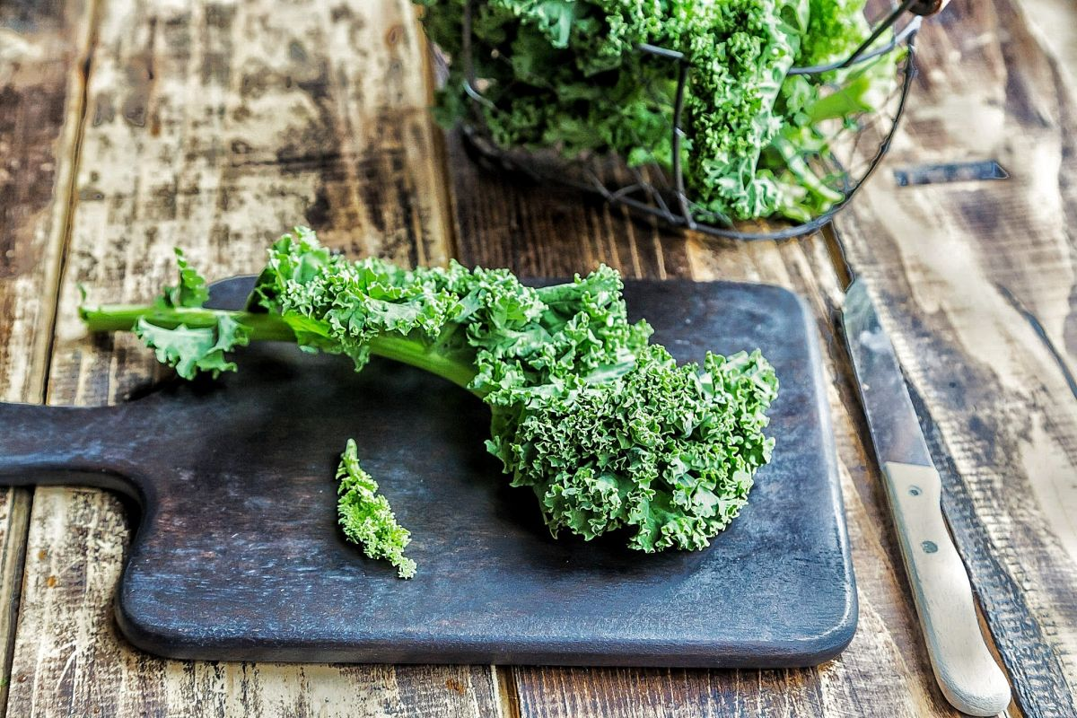 How to grow kale: get a plentiful supply of this nutritious green vegetable with our top tips