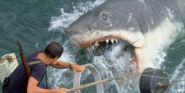 Jaws Just Turned 45, And The Internet Is Still In Love With The Steven Spielberg Film