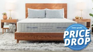 Brentwood Home Labor Day Sale on mattresses