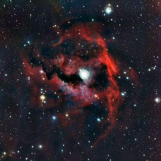 The Seagull Nebula's Head