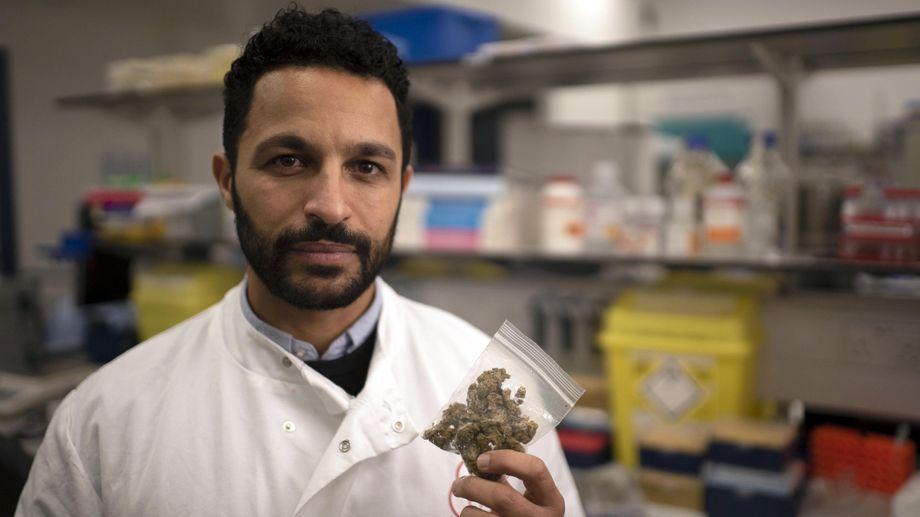 Dr Javid Abdelmoneim Cannabis: Miracle Medicine or Dangerous Drug?