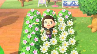 animal crossing new horizons shrubs